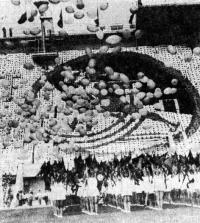 Церемония открытия одной из Спартакиад