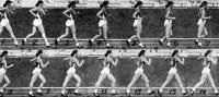 Кинограмма ходьбы Людмилы Хрущевой