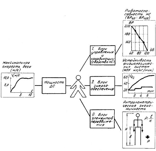 Рисунок основных блоков