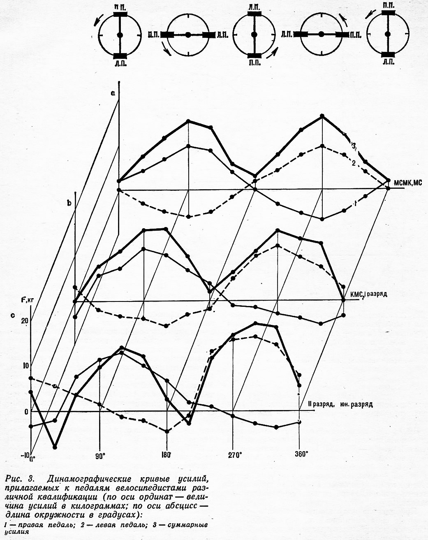 Рис. 3. Динамографические кривые усилий