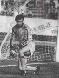 Валерий Сарычев