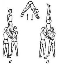 Рис. 5. Со стойки на «решетке» (на ногах) прыжок в стойку на руках