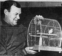 Бобров любил голубей