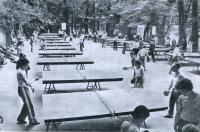 Теннисные столы в Центральном парке имени С. М. Кирова