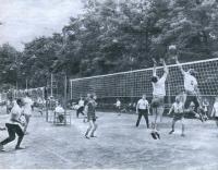 Волейбольная площадка в Центральном парке имени С. М. Кирова