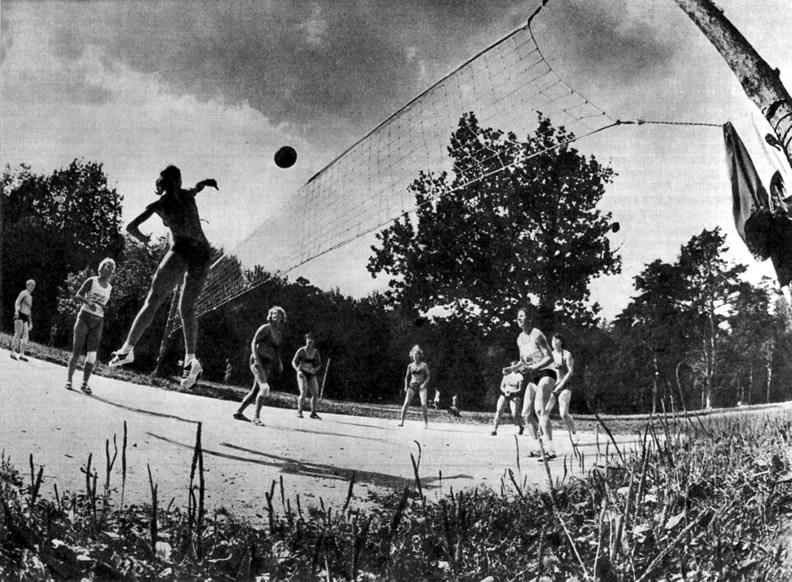 Волейбольная площадка в Раздорах