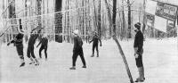 Вот он, лесной волейбол — веселый, жизнерадостный, здоровый